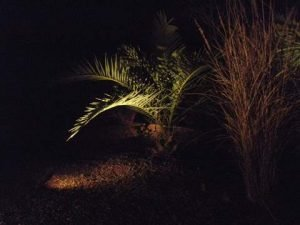 Outdoor Landscape Functional Lighting